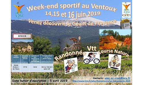 Week-end sportif au Mont Ventoux