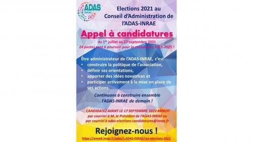 Les élections 2021