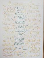 calligraphie-latine-01