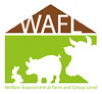 WAFL2017 - Second Announcement