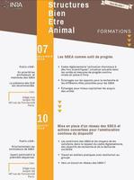Programme Formation SBEA