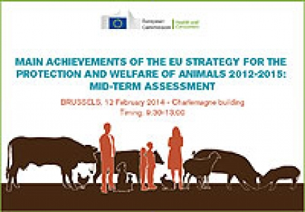 Animal Welfare in EU: Achievements and challenges at the mid-point of the 2012-2015 strategy