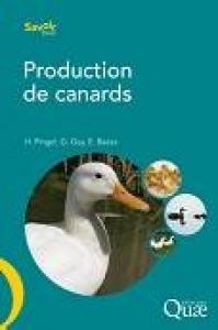 Production des canards
