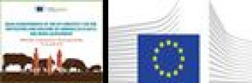 EUROPE : Succès et défis à mi-parcours de la stratégie pour le bien-être des animaux