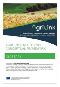 conceptual framework. Glossary