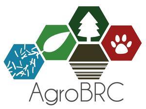 Logo AgroBRC-RARe