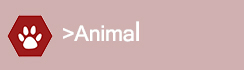 Pilier Animal