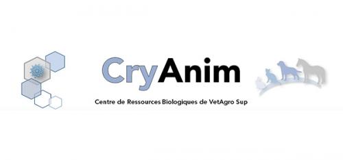 CryAnim
