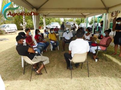 Atelier World Café pour les transitions agroécologiques du NGT