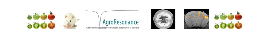 bandeau d'accueil du site de la plateforme AgroResonance, plateforme RMN pour l'agronomie, l'agro-alimentaire et la nutrition