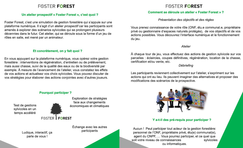 Foster Forest flyer part II