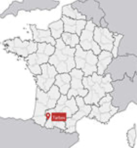 Maize-Bean intercropping in French Tarbais