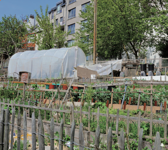 Image les sols urbains sont-ils cultivables