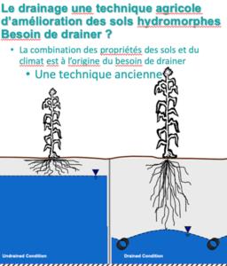 Drainage illustration