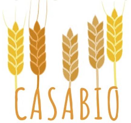 Logo CASABIO