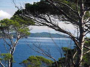 Paysage côtier de Provence Alpe Côte d'Azur ©Roxane Sansilvestri