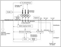 Figure conceptuelle CERES-EGC
