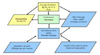 Figure conceptuelle Continuum