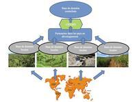 Figure conceptuelle Modèle Empreinte biodiversité produit