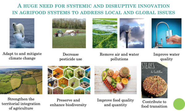 SUPPORTING TRANSITION IN AGRI-FOODSYSTEMS: A TOOL-BOX TO ENHANCE OPEN INNOVATION - INDISS 2021