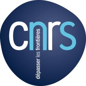 Centre National de la Recherche Scientifique (CNRS)