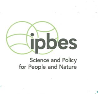 Logo IPBES