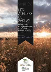 Cover page of the Synthesis of Saclay Workshops