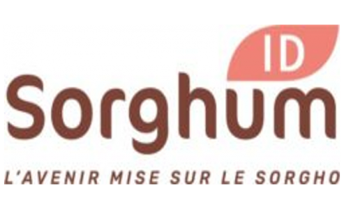 Sorghum ID : vers une organisation européenne et interprofessionnelle du Sorgho