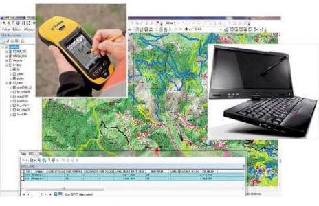 Art20-ns-GPS-SIG (2014)