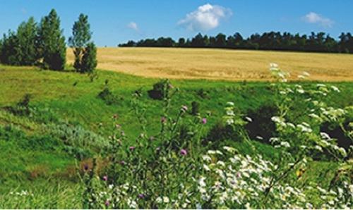 Biodiversité et agricultures