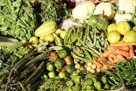 Photo - Rapport sur l'alimentation bio
