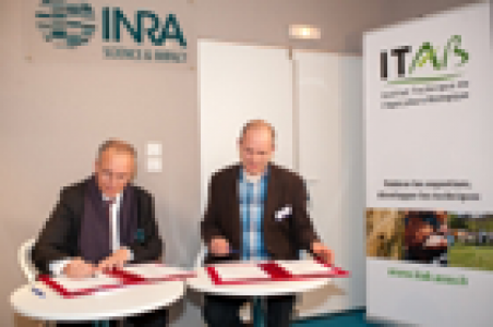 L'Inra et l'Itab ont signé un accord cadre pour accompagner le développement de l'AB.