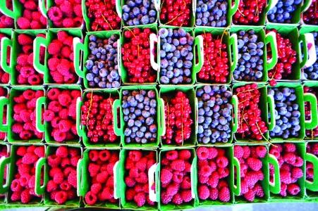 Vente de fruits rouges