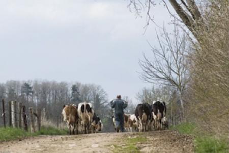 Photo élevage Mirecourt