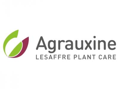 Agrauxine