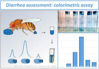 Diarrhea assessment colorimetric assay