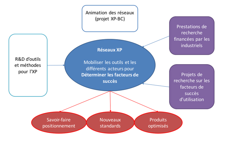 Organisation du réseau XP-BC