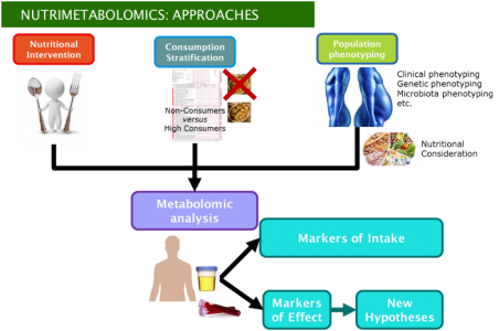 Training School on Metabolomics