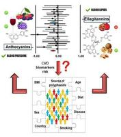 Graphical Abstract_Garcia-Conesa et al Int J Mol Sci 2018