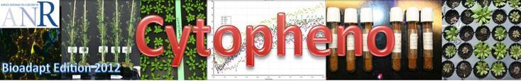 Projet ANR Bioadapt 2012 : CytoPheno