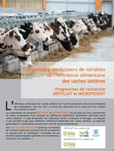 Mieux comprendre les facteurs de variation de l'EA des vaches laitières
