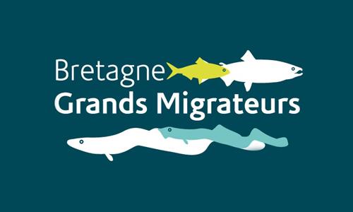 Bretagne Grands Migrateurs