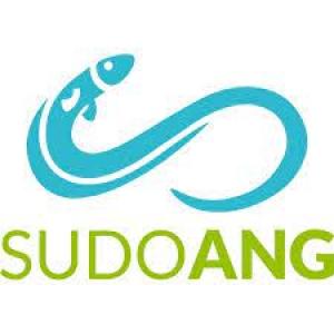 Sudoang