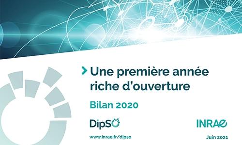 DipSO, une première année riche d'ouverture - Bilan 2020