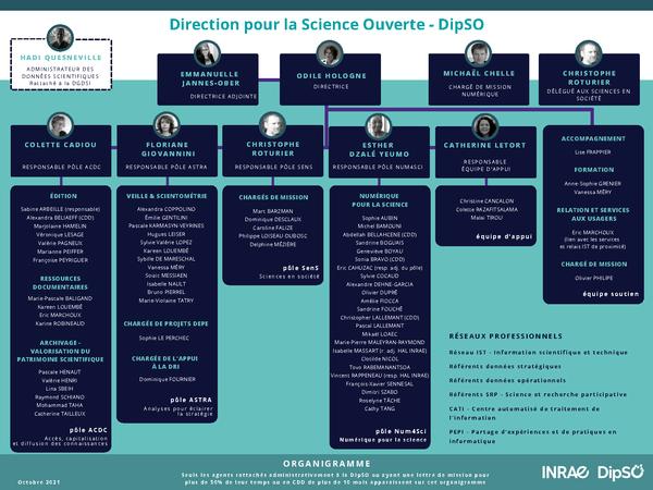 Organigramme de la DipSO