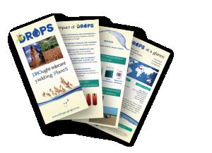 Leaflet DROPS