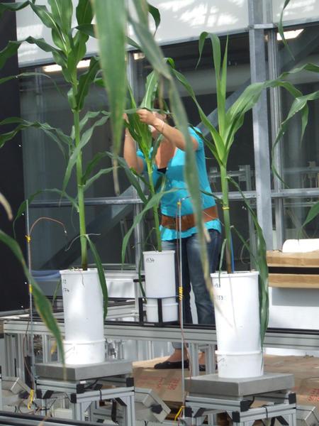 DROPS experiments June 2012_2