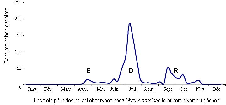 graph vol