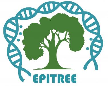 Le projet EPITREE