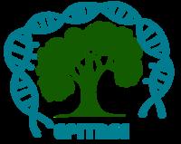 Logo Epitree